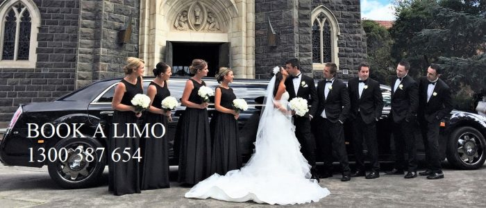 Wedding Limo Party